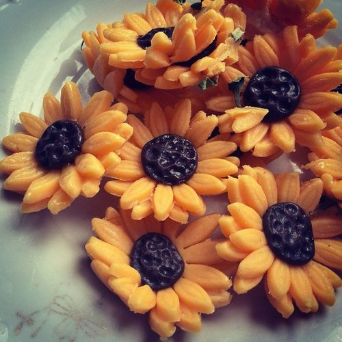 Marcipan Marzipanflower Sweet Flower Sunflower