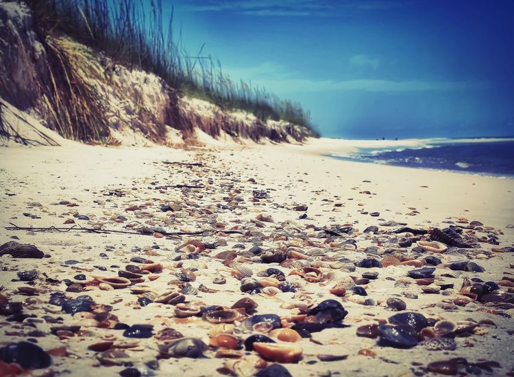 🐚 🌊🐚🐦 Embracing Solitude Shells Playa Beach Sea Shore Pebble Surface Level Tranquil Scene Nature Sky Sand Tranquility Water Scenics Beauty In Nature Horizon Over Water No People (guess I don't count as a people) Close-up Outdoors Taking Photos Tranquility Relaxing Textures And Surfaces Walking Around