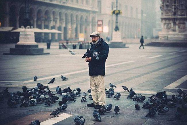 Foggy Milan, today morning - a man who warms up with pigeons Fog Milano Vscoaward Liveauthentic Igersmilano Travelmore Thisisitaly Exploring_the_earth Lightlovers Visualauthority Igersitalia Passionpassport Editoftheday Fashionoftheday Photooftheday Everydayeverywhere Exploreeverthing Everydayinpics Reportagespotlight Superhubs Explorethecreative Instamagazine_ Visualsoflife Beardman Thecoolmagazine ig_gods vscofilm vscocommons instagood artofvisuals @viaualauthority @livefolk @nikontop @vscoauthentic @the_artistsway @vscogood_ @MobileMag @superhubs @visualoflife @inspirationcultmag @theimaged @instagram @igersmilano @igersitalia @everyday_italy @editoftheday @fashionoftheday@photooftheday