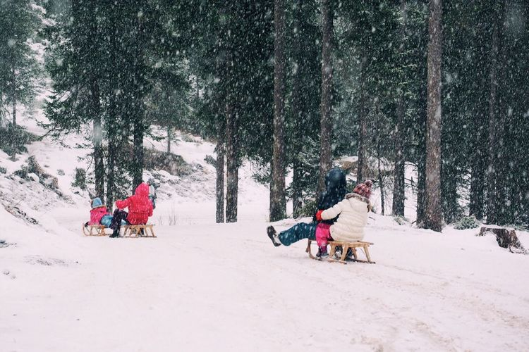 People tobogganing on snow covered field against trees