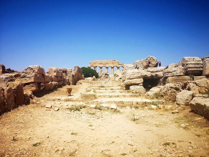 Ruins Siciily Selinunte Ancient Ancient Civilization Architecture History Temple EyeEm Selects Leopard Sand Rock - Object Desert Sky Landscape Semi-arid Arid Landscape Historic Old Ruin The Past Archaeology Civilization