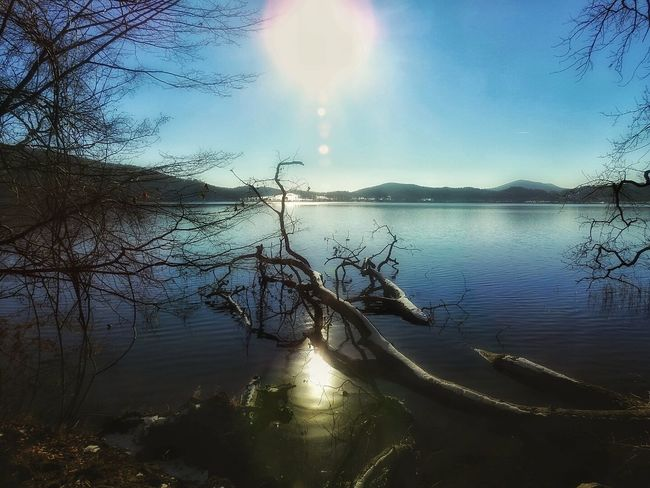 Water Reflection Nature Tree Sea Sunset No People Beauty In Nature Outdoors Naturephotography Cold Weather Winter_collection Winter Outdoor Photography Wilderness Nature_collection Cold Temperature Snow Nature