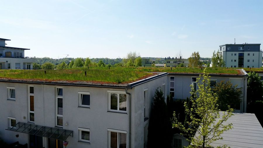 Dachbepflanzung Modern Future Modern House Green Roof Green City Taking Photos Outdoor Photography Natur Hello World Wiese  Roofgarden Zukunft Dachbepflanzung Kombinieren Beton And Nature Symbiosis Symbiose