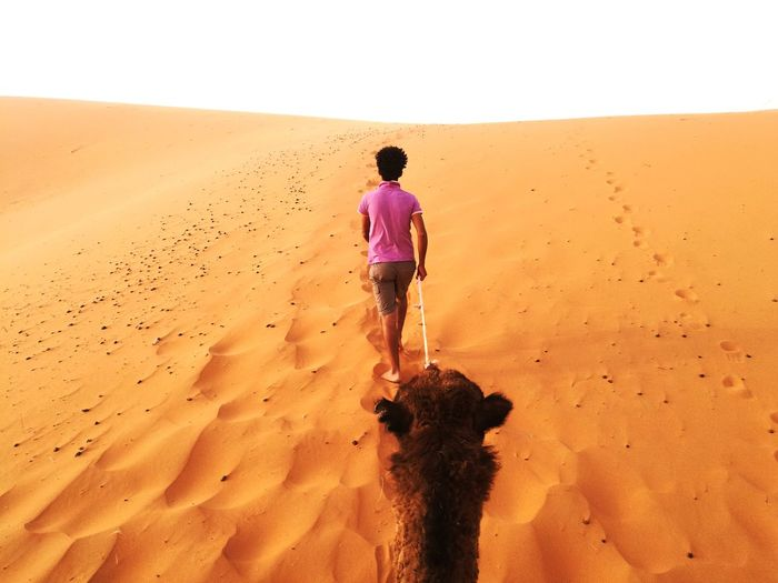 Rear view of man leading camel on sand dune