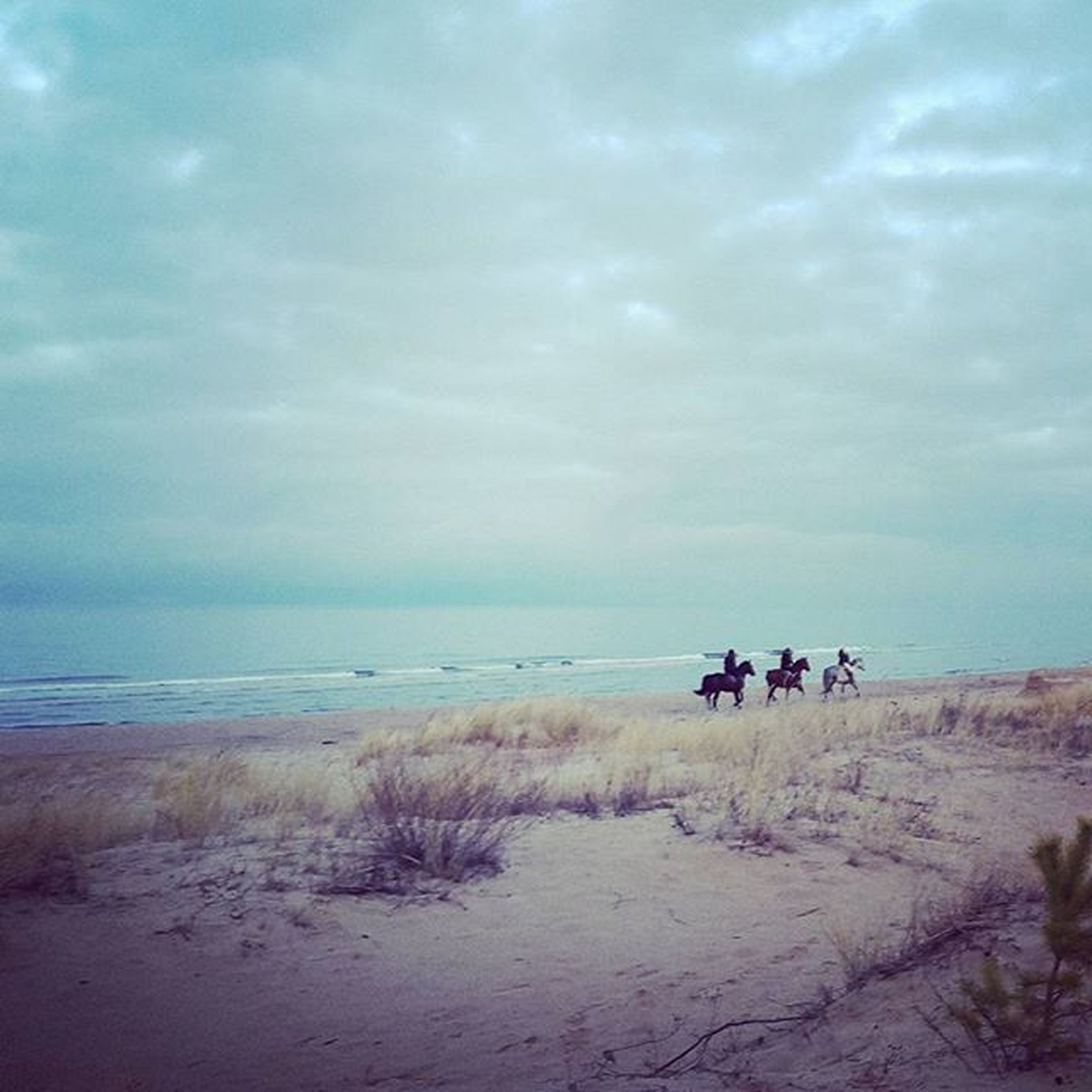 sky, beach, sea, water, tranquility, horizon over water, tranquil scene, scenics, shore, sand, beauty in nature, nature, cloud - sky, cloud, idyllic, incidental people, outdoors, men, landscape