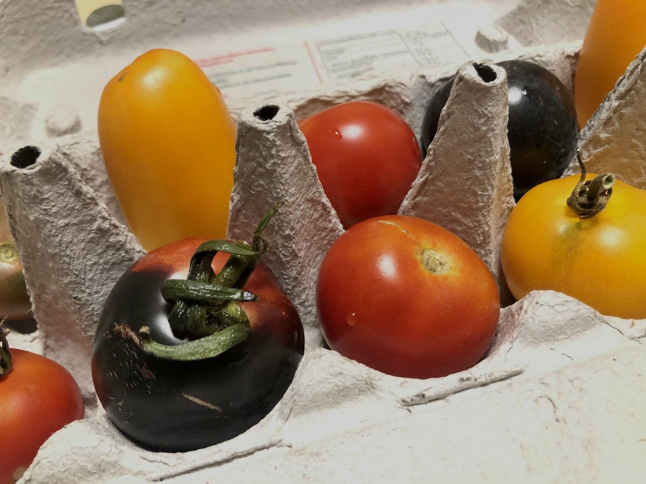 HIGH ANGLE VIEW OF TOMATOES AND FRUITS ON CHERRY