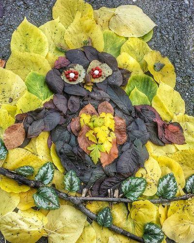 Owl Blätter Eule Creative Colors Bunt Autumn Foliage Bought  Picoftheday Photo Spassamcreativsein Kreativitet Like Taksforlikes