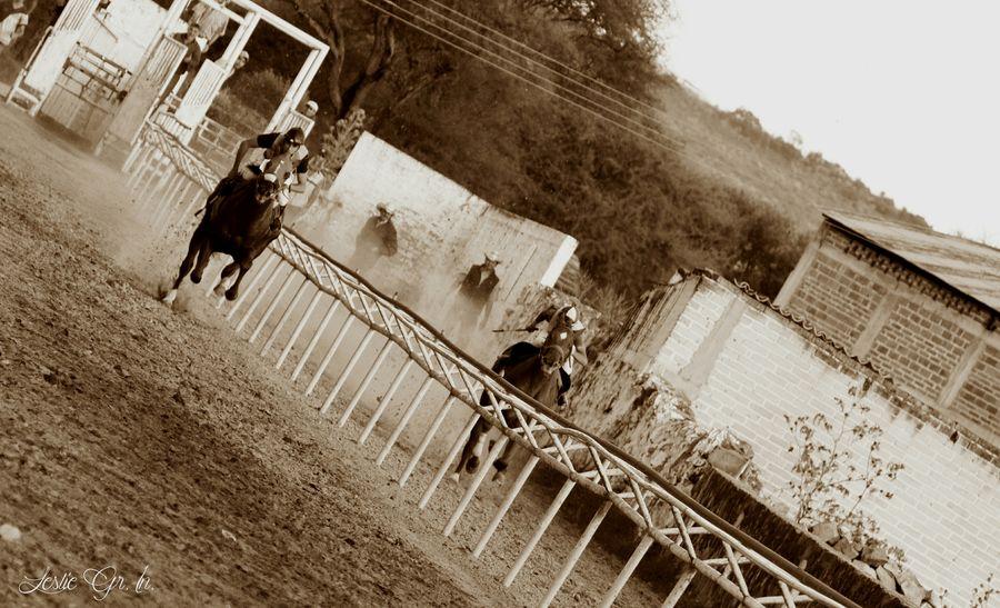 """Horse Race"" Horse Race Caballo Carrera Carreradecaballos Leslie_Gr_In Sepia Animals Jockey"