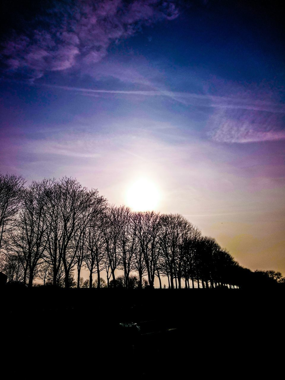 tree, silhouette, sky, sunset, bare tree, sun, nature, beauty in nature, sunlight, tranquil scene, tranquility, outdoors, scenics, no people, landscape, branch, day