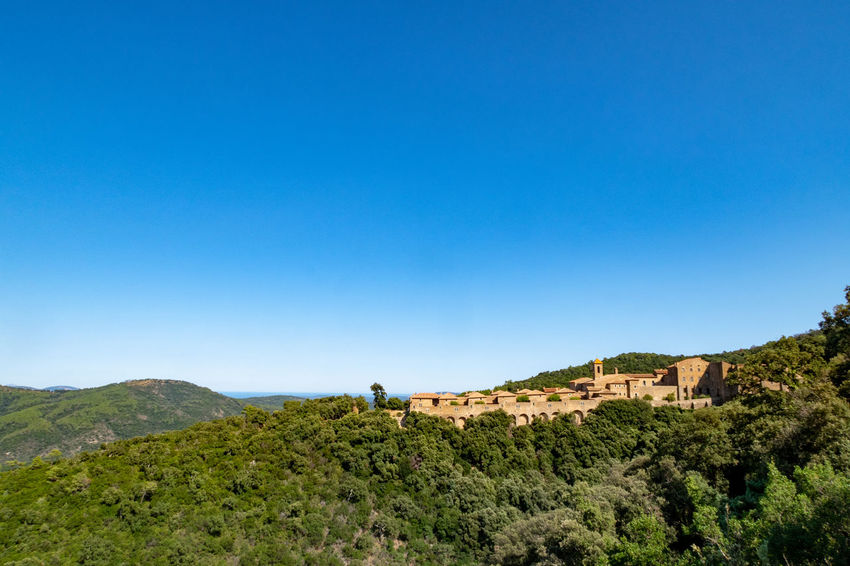Collobrieres Massif Des Maures,Var Maures Monastery Architecture Beauty In Nature Blue Built Structure Carthusian Clear Sky Copy Space Day Environment Landscape Lifestyles Medieval Medieval Architecture Mountain Nature Non-urban Scene Outdoors Scenics - Nature Sky Tranquil Scene Tree