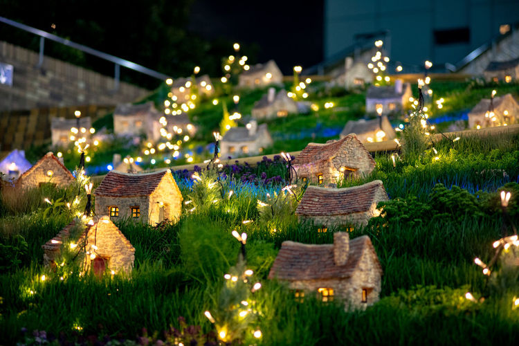 Architecture Building Building Exterior Built Structure Celebration Decoration Glowing Green Color House Illuminated Lighting Equipment Nature Night No People Outdoors Plant Residential District Selective Focus Travel Destinations