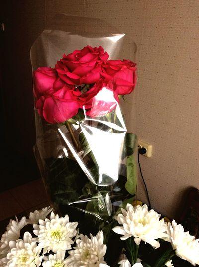 Люблю цветы к 8 марта