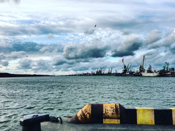 Water Transportation Sea Tranquility Bird Nautical Vessel Mode Of Transport Tranquil Scene Scenics Flying Cloud Cloud - Sky Sky Non-urban Scene Beauty In Nature Travel Destinations Nature Environment Harbor Cloudscape