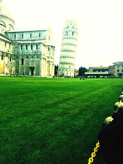 •_• Pisa Cool Big Smile ınteresting Travel