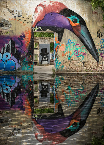 Architecture Paint Bird Building Exterior Built Structure Close-up Color Day No People Outdoors Tag Water
