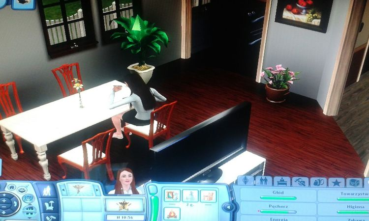 The Sims 3 gramy ! ;)