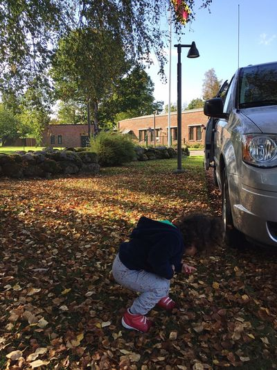 Transportation Tree Childhood Land Vehicle Rear View Mode Of Transport Casual Clothing Leisure Activity Full Length Day Person Outdoors Innocence Autumn Autumn Leaves Autumn🍁🍁🍁 Autumn Colors Autumn Collection Minivan
