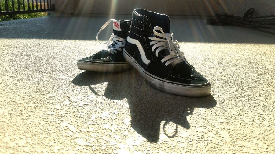 Vans chillin in the sun