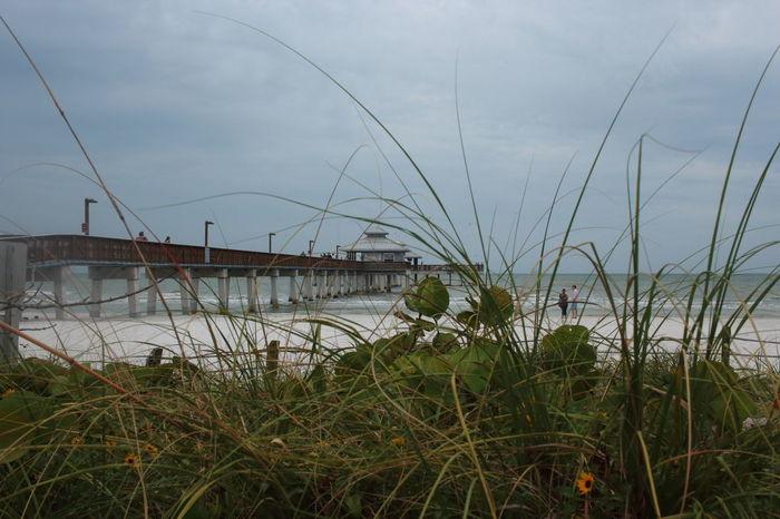 Cloud - Sky EyeEM Beach Photography Florida Fort Myers Beach Grass Outdoors Plant Scenics Sky Tropical Climate
