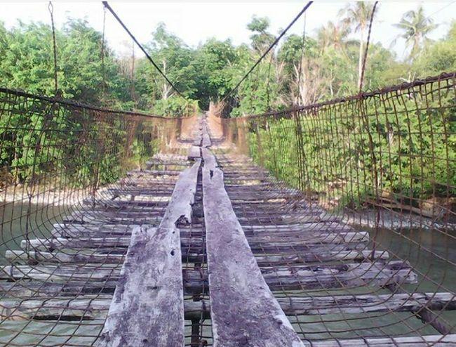 Outdoors The Great Outdoors - 2017 EyeEm Awards First Eyeem Photo Nature Place Of Heart Kota Belud Sabah Borneo