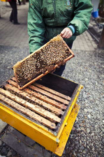 Midsection of beekeeper with beehive
