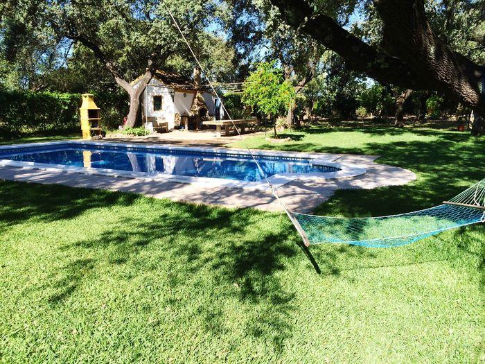 Everyday Joy Check This Out Relaxing Taking Photos Enjoying Life Swimming Swimming Pool Chilling Sun Hi! Sevilla
