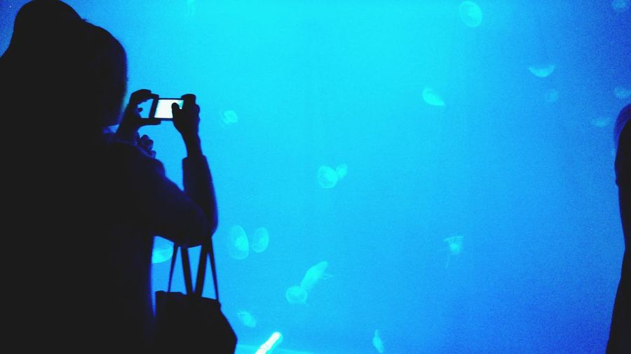 People Blue Saint-Petersburg Jellyfish Light Ocean
