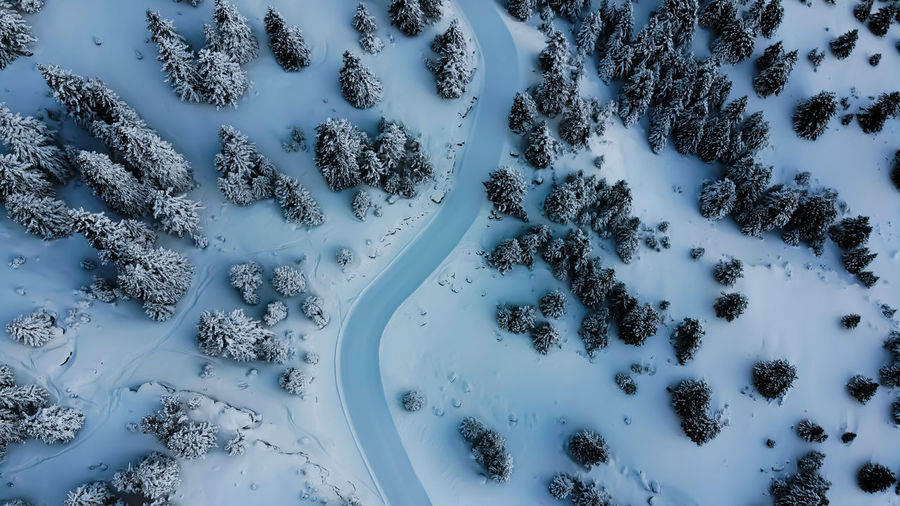 Ice Road Road Snowroad Fir Tree Mountain Road Backgrounds Tree Aerial View Snow Covered Snowcapped Countryside Deep Snow