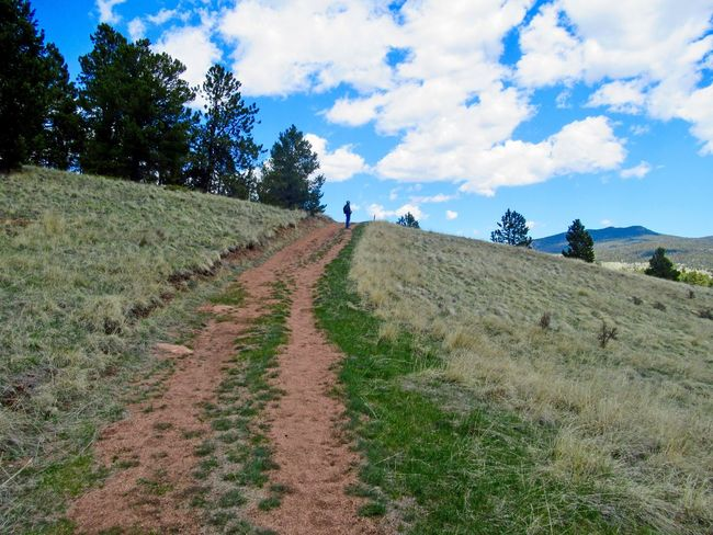 Hiking uphill on trail in Mueller State Park in Colorado Forest Colorado Hillside Travel Destinations Wilderness Hiking Trail Hiking Sky Nature Grass Cloud - Sky Landscape Tranquility Field Scenics Day Beauty In Nature Outdoors Walking Tranquil Scene Tree