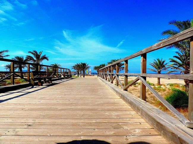 Palm Tree Tropical Climate Beach Holiday Bridge Beauty In Nature Surf EyeEm Nature Lover End Of Summer Summer Peace Wind Amazing View
