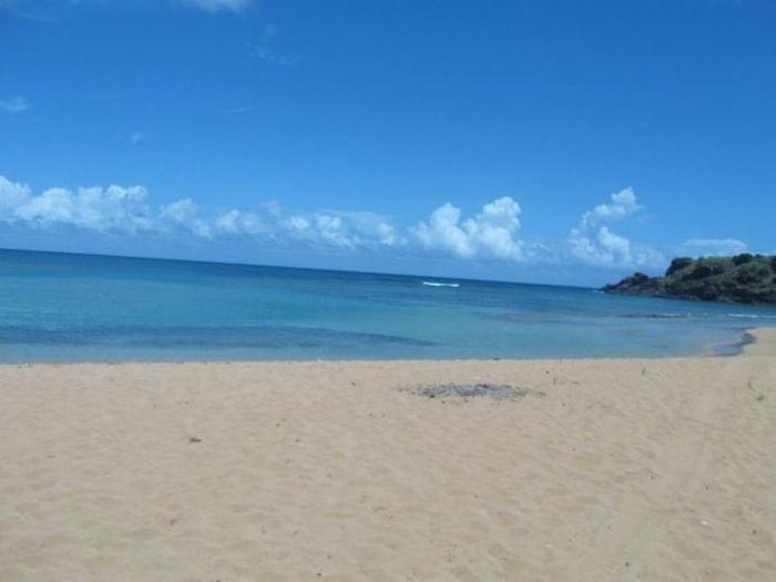 Puerto Rico Vacation Time Beach Corredor Ecologico Fajardo
