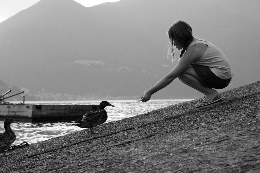 Animal Themes Animals In The Wild Bird Childhood Day Domestic Animals Full Length Mammal Nature One Animal One Person Outdoors People Real People Side View Water Young Adult