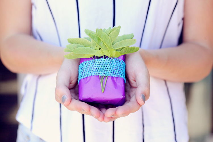 Close-Up Of Woman Holding Colorful Present