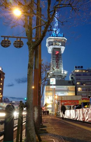 Beppu Tower Night Illuminated Architecture Built Structure Sky Outdoors Tree Building Exterior No People City Astronomy