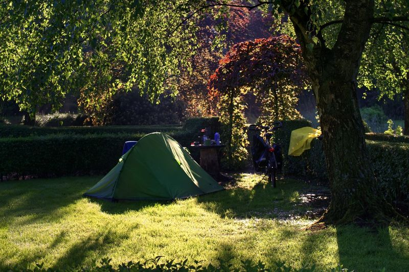 View of tent in park