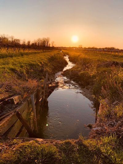 Stream EyeEm Nature Lover Sky Water Sunset Tranquility Scenics - Nature Beauty In Nature Reflection Nature Tranquil Scene No People Sun Plant Sunlight Lake Outdoors Non-urban Scene Idyllic Environment Tree
