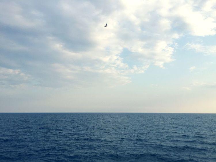 Sea Ocean Sky