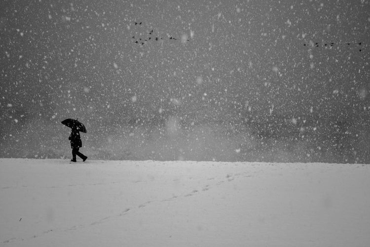 Black sea beach, last day of 2016, Batumi,Georgia EyeEm EyeEm Best Shots EyeEm Nature Lover EyeEm Gallery EyeEmNewHere Love Man Nature Nikon Shades Of Winter Beauty In Nature Blackandwhite Blackandwhite Photography Blacknwhite Day Nature One Person People Photo Photography Sea Snow Snowing Weather Winter