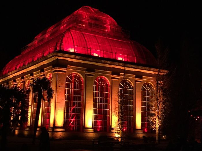 Night Illuminated Architecture Building Exterior Built Structure Red No People Low Angle View Outdoors Sky City No Filter, No Edit, Just Photography Edinburgh Botanic Garden Christmas Lights