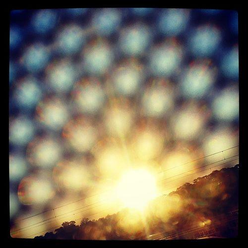 Sunshine Bubbles Perthlife Buslife