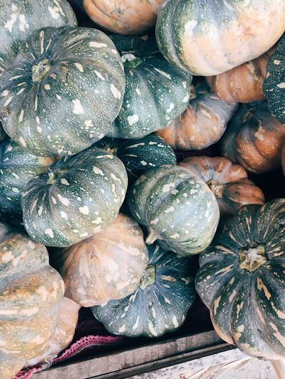 Pumpkins 🎃 Vegetable Food And Drink Food Healthy Eating Abundance Large Group Of Objects No People Pumpkin Freshness Squash - Vegetable Close-up