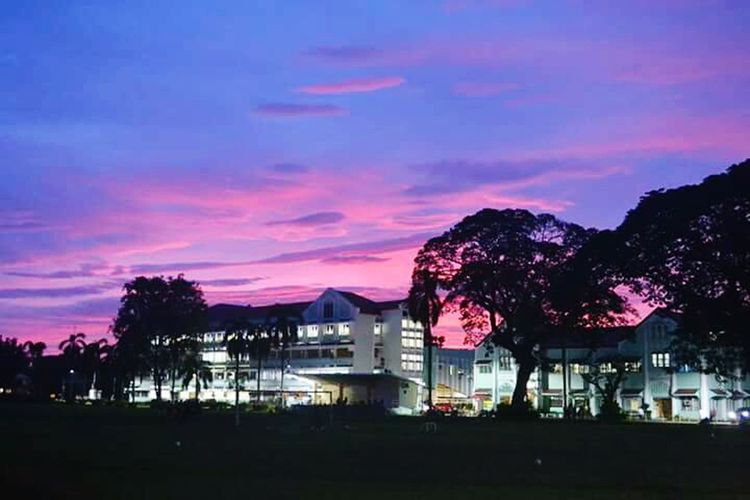 Purple Tree Night Built Structure Outdoors Sky No People Blue Nature Beauty In Nature Check This Out Check This Out 😊 Itsmorefuninthephilippines CentralPhilippineUniversity CPU