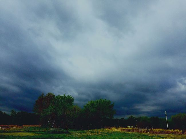 Oklahoma Nature Oklahoma Oklahoma Weather OklahomaSkies Oklahoma Sky Tornado Alley Storm Spotters Mother Nature Weather Photography Nature's Diversities