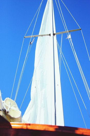 Transportation Blue No People Day Outdoors Cable Low Angle View Nautical Vessel Sailboat Sky Sailing Ship Yacht Water Nature Yachting EyeEm Selects Luxury Sailing Summer Yachting Sport Nautical Theme Rigging Sunlight Nautical Equipment Mast