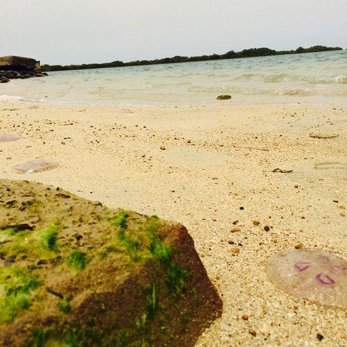 Sea Being A Beach Bum Sunshine Sandcastles Getting A Tan Relaxing Surfing Swimming Enjoying The Sun Enjoying Life