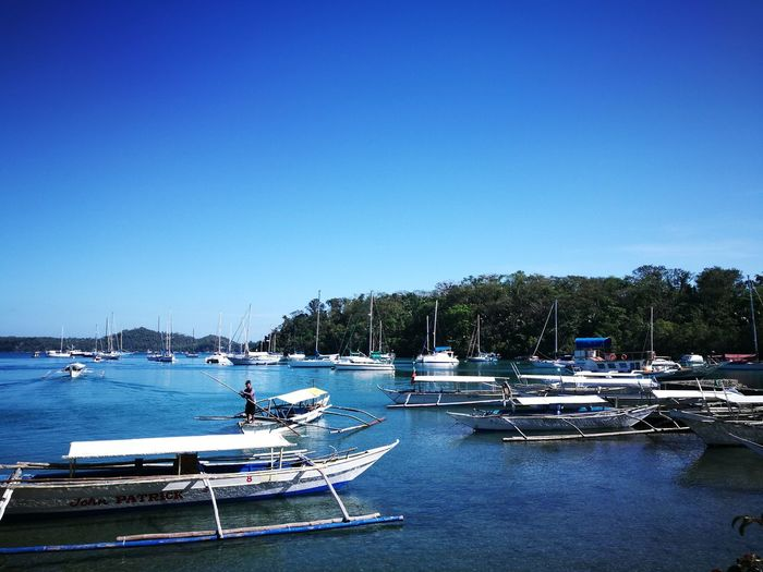 Port Water Clear Sky Sea Blue Sailboat Outdoors Tree Sky Tranquility Travel Destinations Boat Mindoro, Philippines Nautical Vessel Moored Reflection Transportation Pedal Boat No People Day Nature Beauty In Nature Yacht