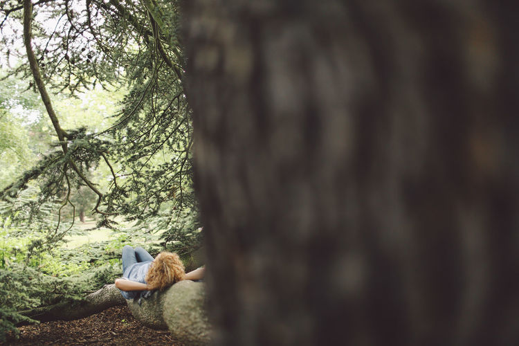 Animal Animal Wildlife Avian Beauty In Nature Blonde Close-up Curly Hair Day Feather  Focus On Foreground Garden Girl Growth Lying Down Nature Nature No People Outdoors Park Selective Focus Tranquility Tree Wildlife People And Places London Lifestyle