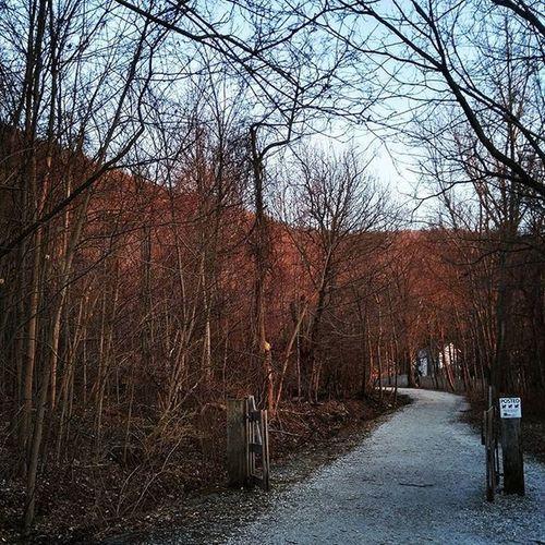Beacon Mountbeacon Sunset Hiking Fiftyshades_of_nature Primeshots Shadowandlight Shadow