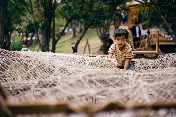 Boy Looking Away On Fishing Net