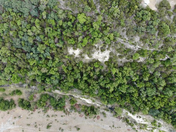 Arid Climate Arid Dronephotography Aeriel Photo Aerial View Desert Desert Beauty Deserts Around The World Desert Plants Green Textures and Surfaces Textured  Nature Photography Tree Tops Treelines Trees Nature Texture Arid Landscape Backgrounds Full Frame Water High Angle View Close-up Grass Green Color Plant Countryside Rough Rugged